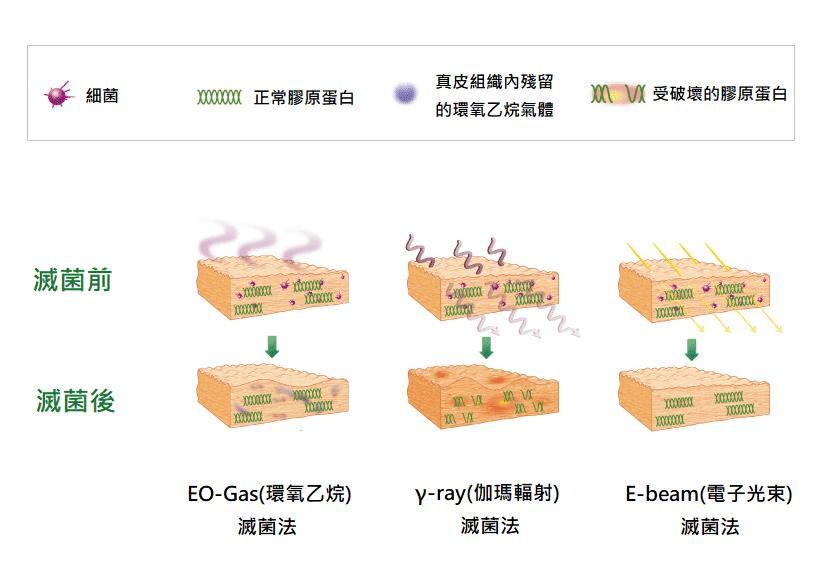 異體真皮粉滅菌法