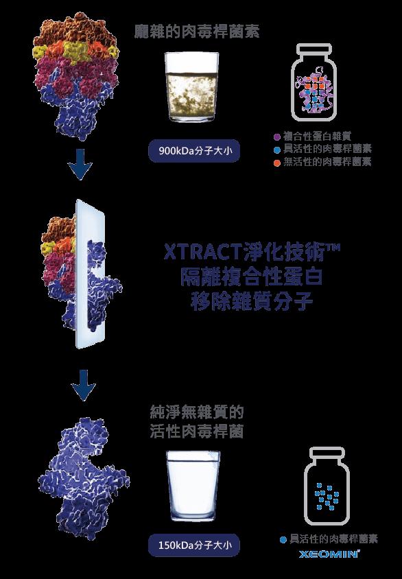 xeomin天使肉毒製造過程-獨家專利XTRACT淨化技術™